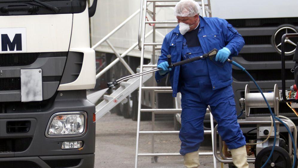 Mecklenburg-Vorpommern: Kampf gegen die Geflügelpest
