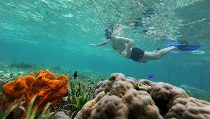 Reisebilder aus Indonesien: Ein Traum von Inseln