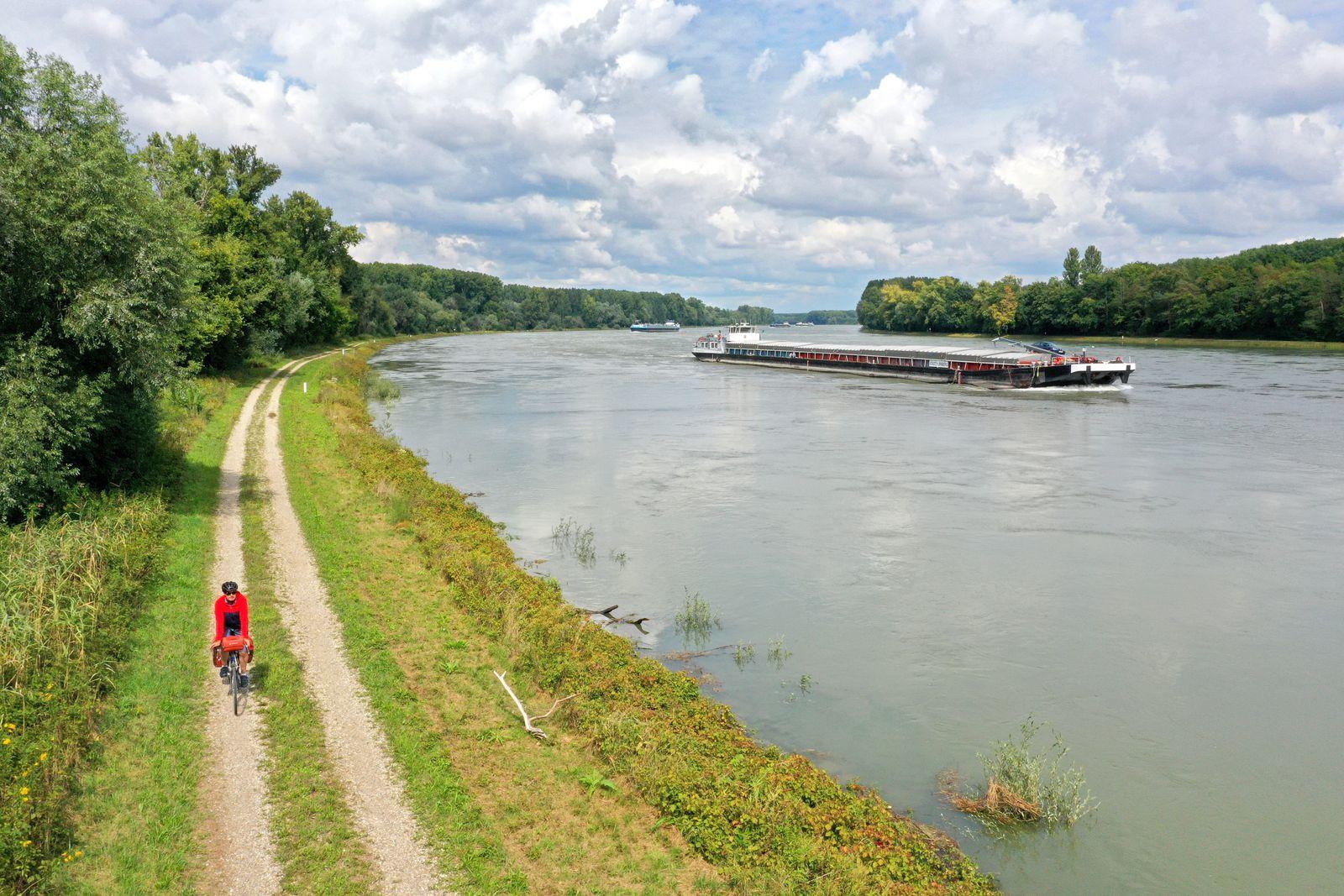 Rhein-Radweg - Uferweg in der Pfalz - Thorsten Brönner