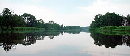 """Peenetal: Der """"Amazonas des Nordens"""" ist Rückzugsgebiet für bedrohte und seltene Pflanzen und Tiere"""