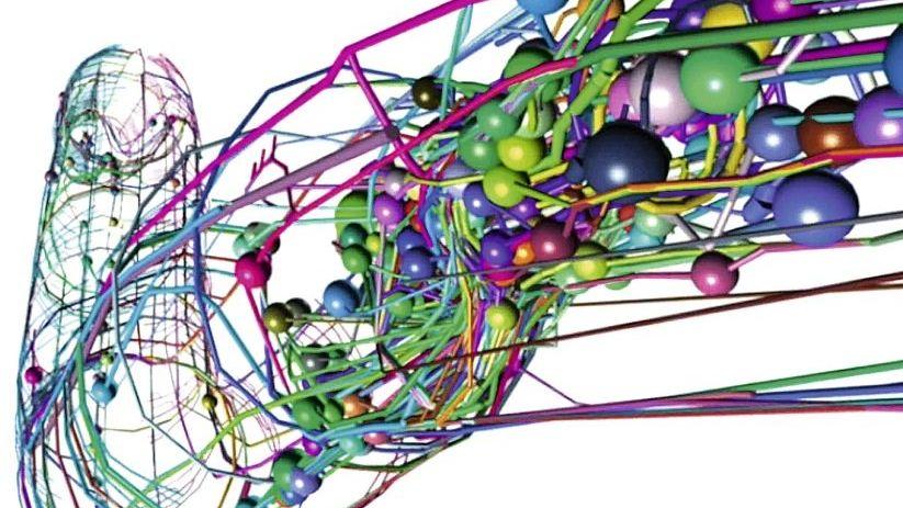 Fadenwurm im Computermodell