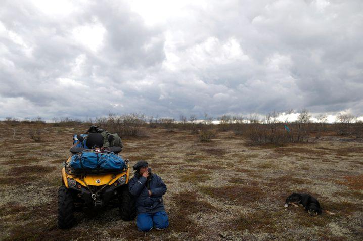 Ein samischer Rentierhirte repariert im Norden Norwegens