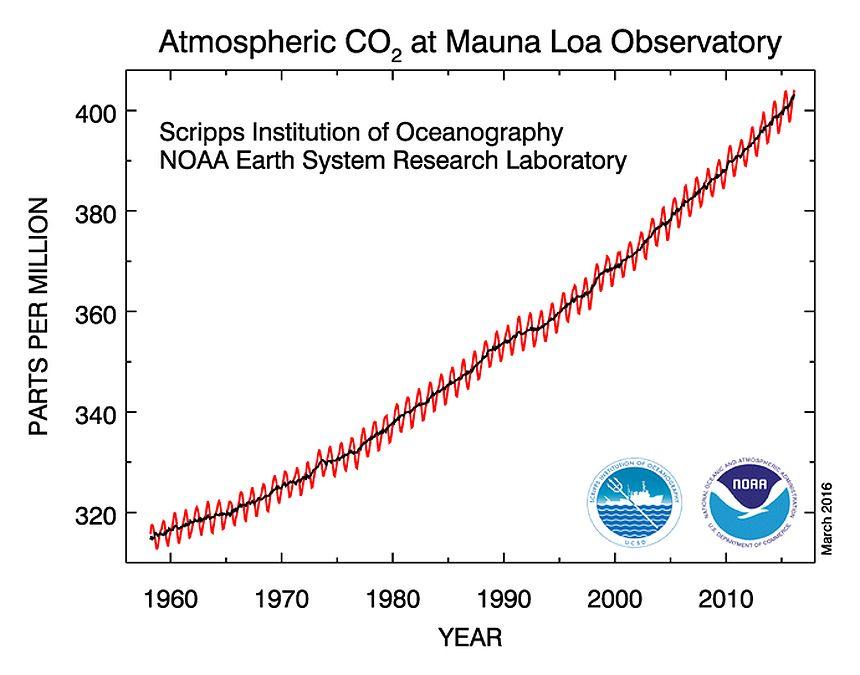 CO2/ Mauna Loa/ Grafik