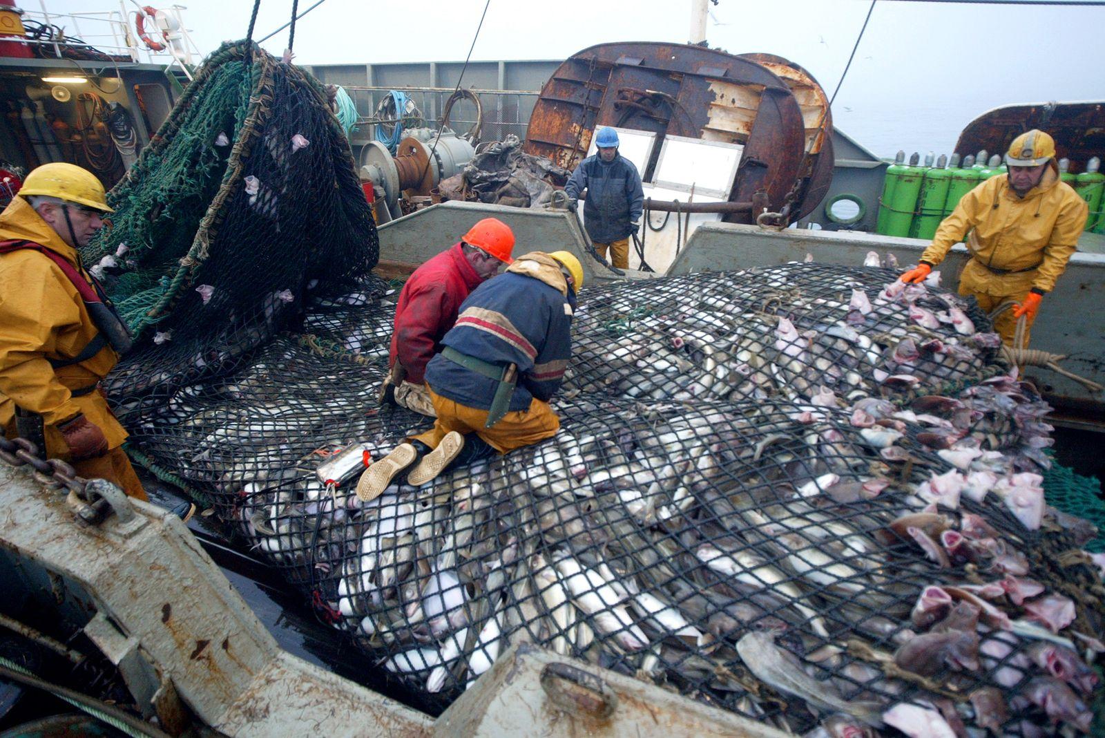 Fischerei / Frankreich