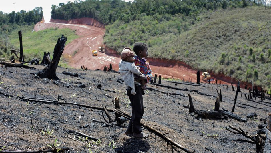 Waldvernichtung für Nickel- und Cobaltminen auf Madagaskar: Die reichen Länder profitieren, die armen leiden