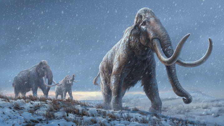 Steppen-Mammut – in einer Rekonstruktion des Magazins »Nature«