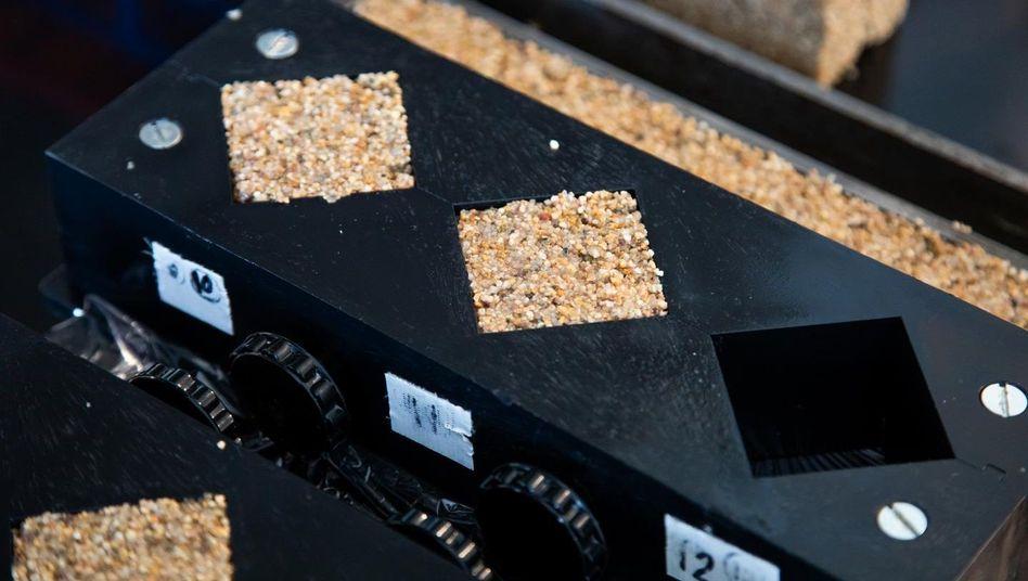 Materialforschung: Wissenschaftler erzeugen lebenden Beton