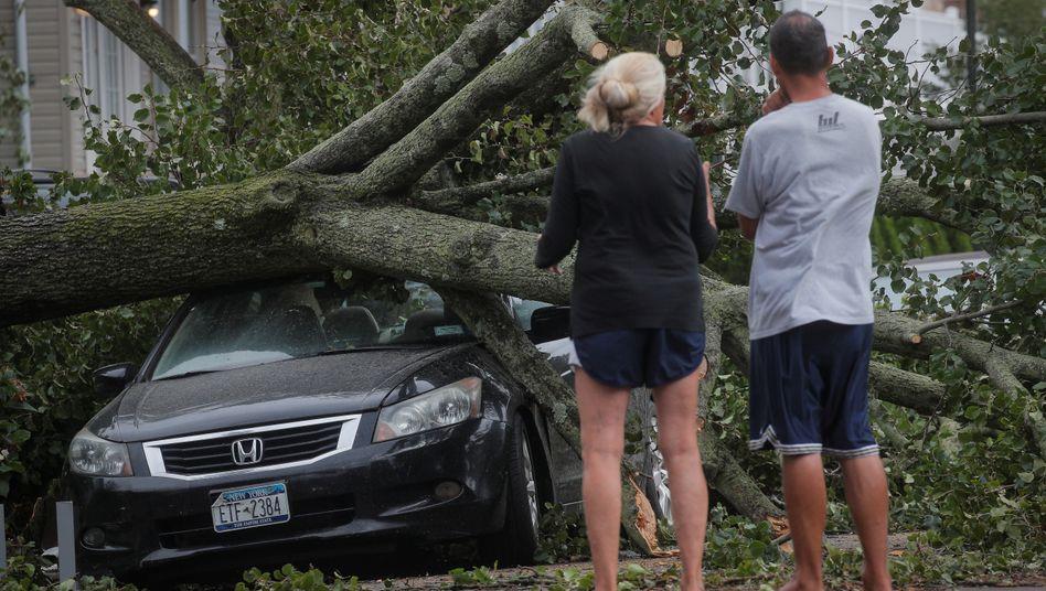 Umgestürzter Baum im New Yorker Stadtteil Queens: Evakuierungen oder Notstandsverordnungen wurden zunächst nicht ausgerufen