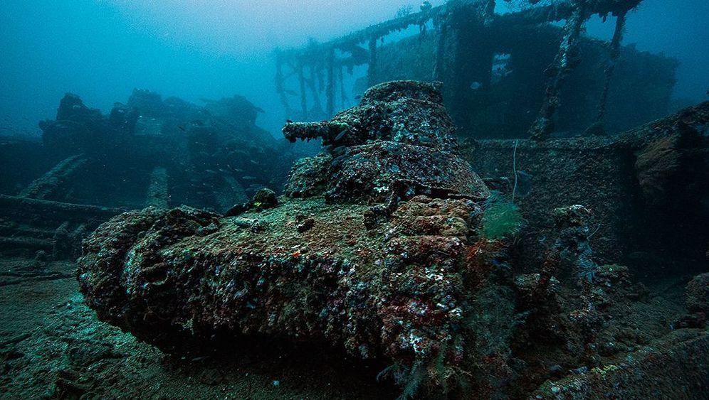 Schiffsfriedhof unter Wasser: Venus im Sand