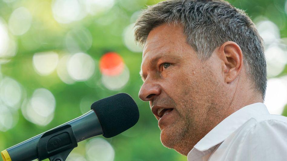 Grünen-Co-Chef Habeck: »Die sehr guten Topverdiener müssen dann ein bisschen mehr berappen«