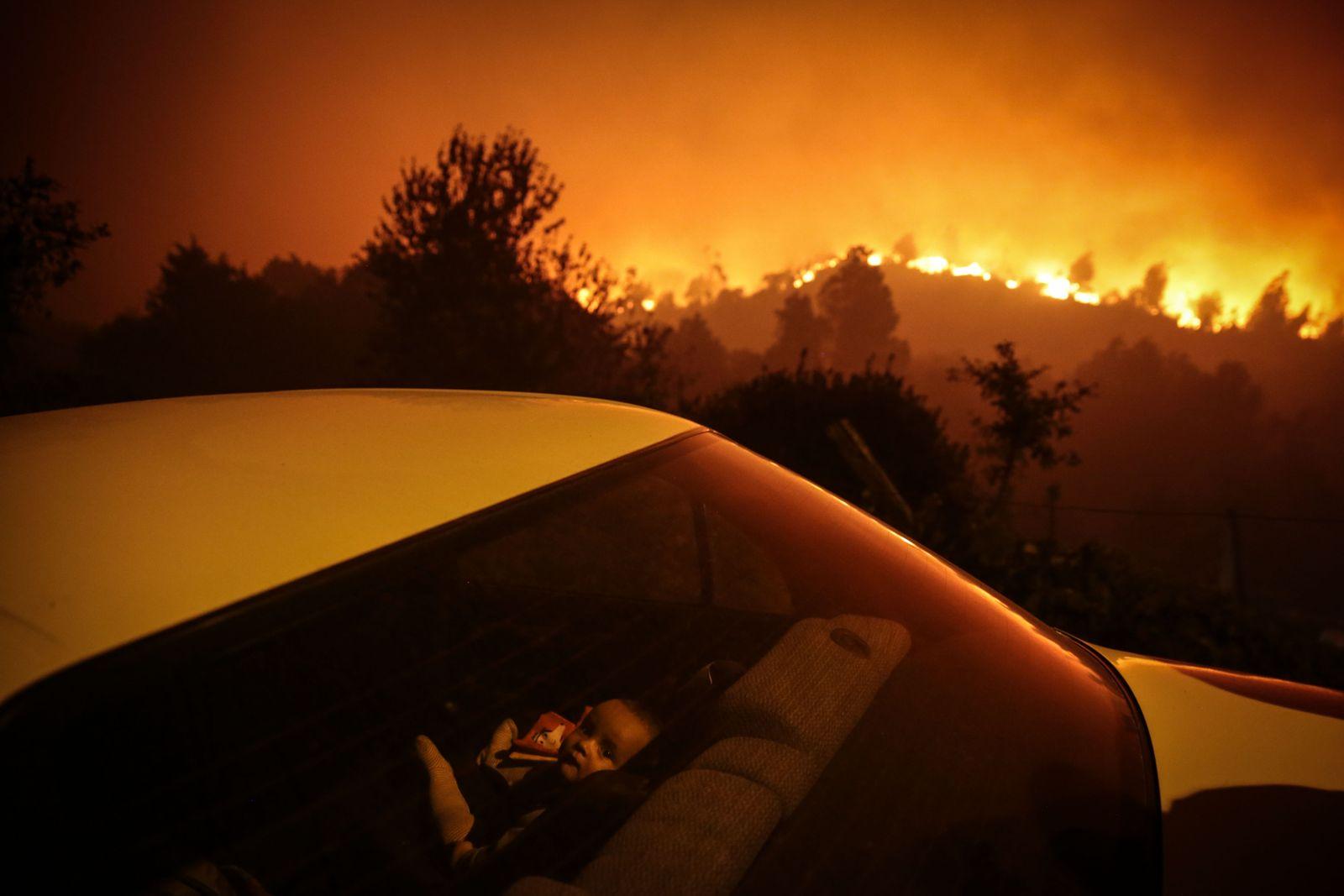 Forest fire in Oliveira de Frades, Portugal - 07 Sep 2020