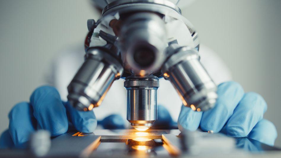 Forschung unter dem Mikroskop: Die öffentliche Debatte wird mit Scheinargumenten geführt