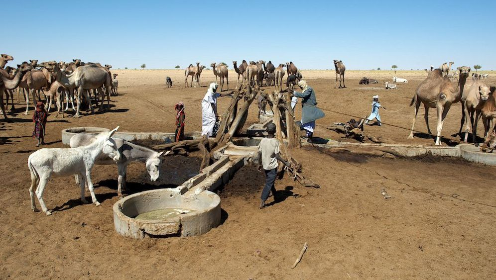 Fotosafari im Tschad: Schlafen unter Sternen