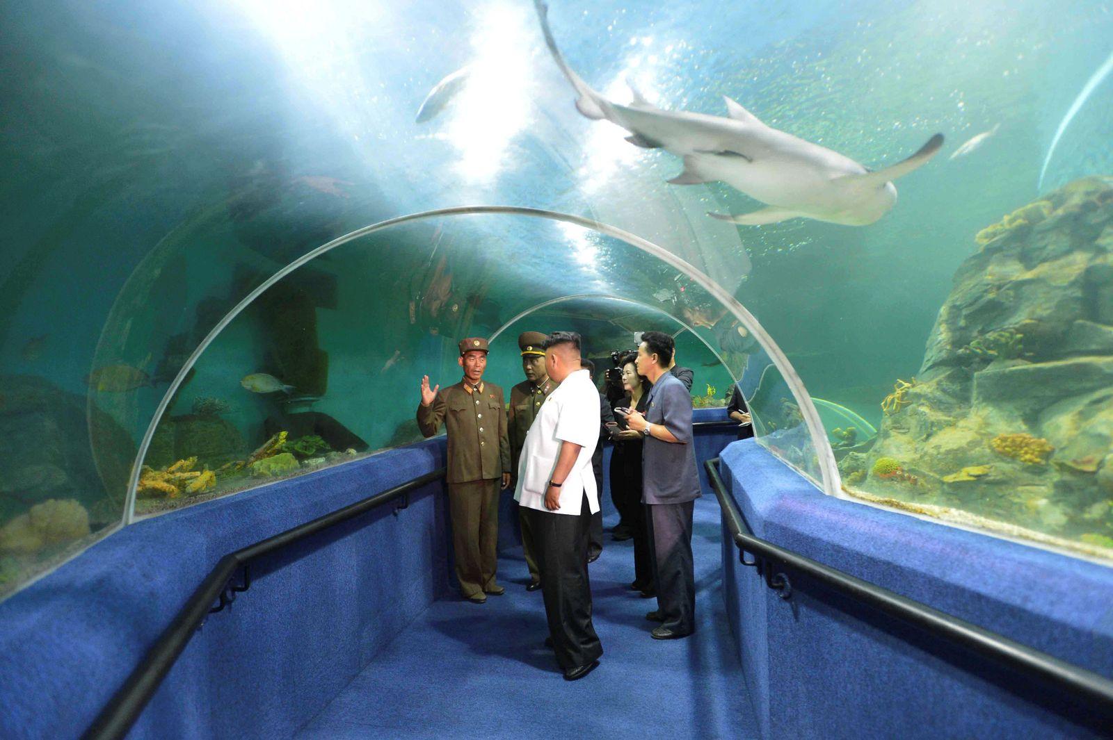 FILE PHOTO: North Korean leader Kim Jong Un visits the Songdowon International Children's Camp