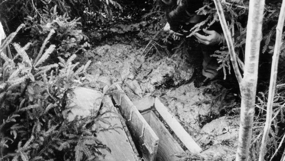 Der Eingang des unterirdischen Verlieses in einem Waldstück bei Schondorf, das mit frisch gepflanzten Bäumen getarnt war (Archivfoto vom 04.10.1981).