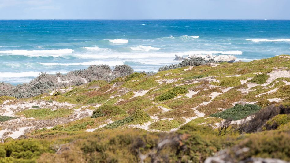 Küste von Kangaroo Island in Australien