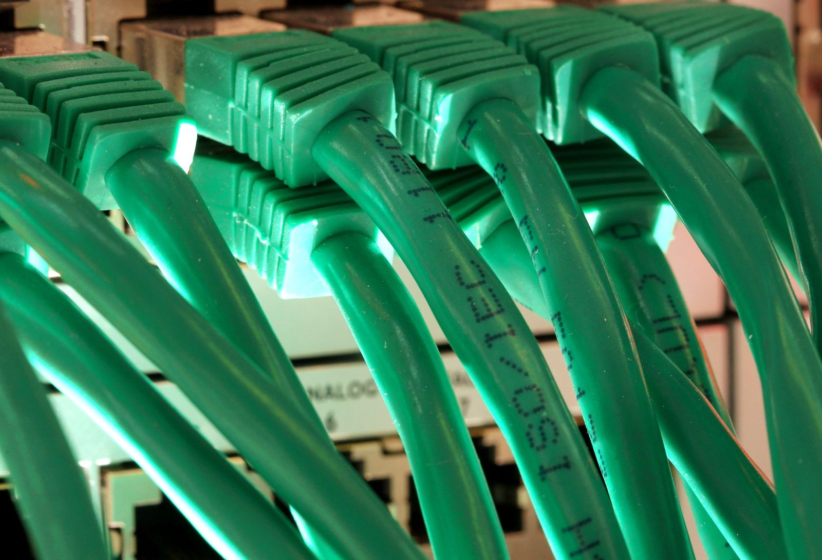 LAN-Kabel / Netzwerkkabel