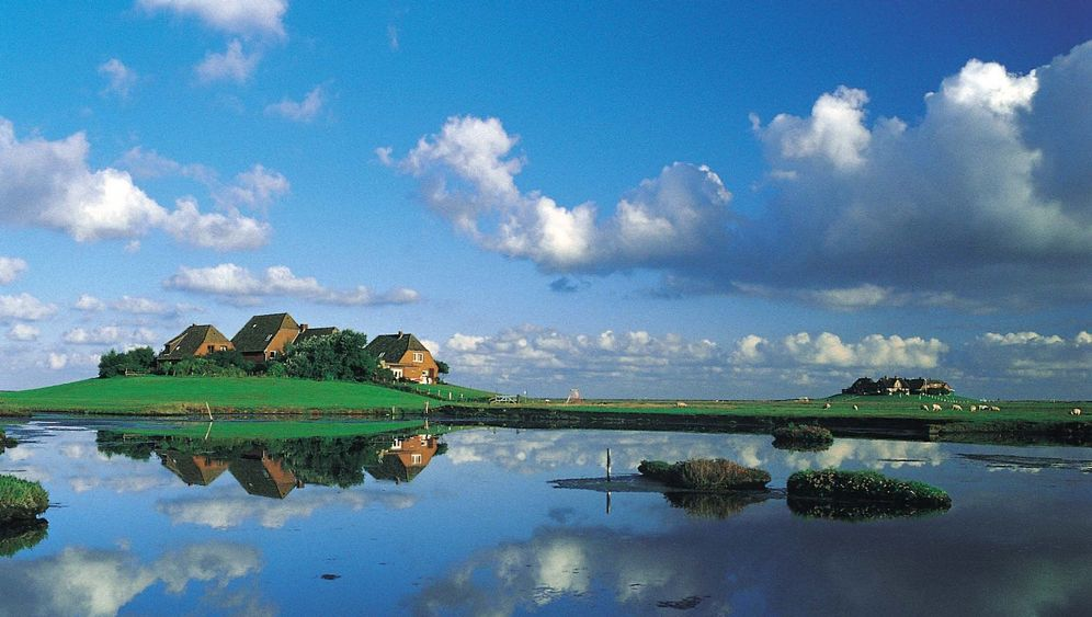 Thüringerin nach Nordfriesland: Einmal Hooge, immer Hooge