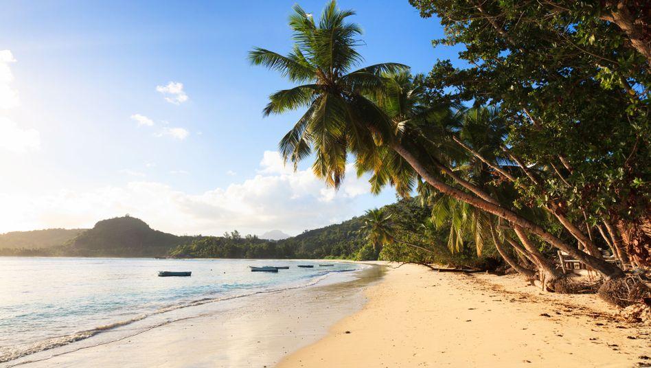 Strand auf den Seychellen: Die Deutschen können nicht loslassen