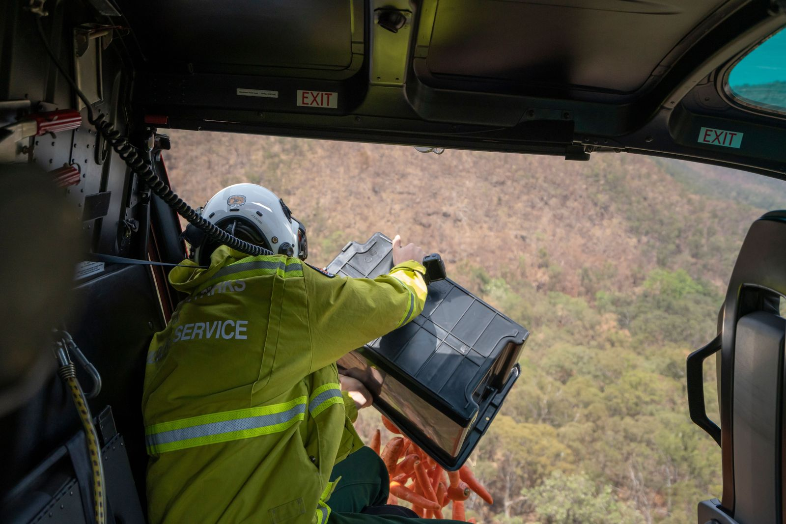 Food drops for fire affected wildlife in Australia, Ade - 13 Jan 2020