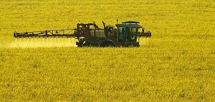 Landwirt auf Rapsfeld: Brot- und Butterspende ist zum festen Bestandteil karitativer Einrichtungen geworden