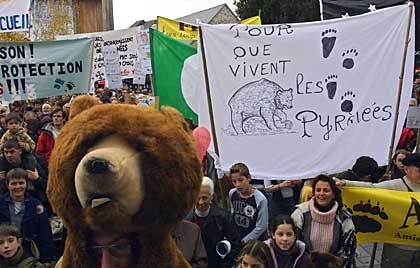 Environmentalists demonstrating in Oloron Sainte Marie in France for protecting wild bears in the Pyranees.