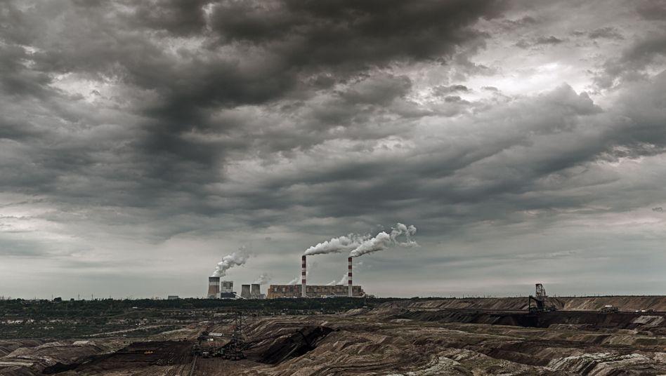 """Braunkohlekraftwerk Belchatów: """"Die Sorge um die natürliche Umwelt ist eine der Prioritäten des Kraftwerks Belchatów"""""""