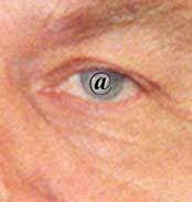 Das Auge des Kanzlers: Seit Anfang 2000 hat er das Web fest im Blick
