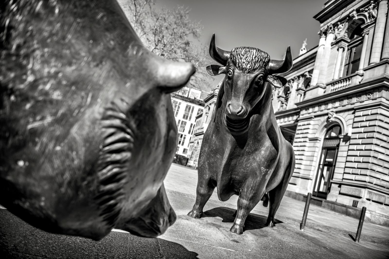 Bulle und Baer vor der Deutschen Boerse Frankfurt