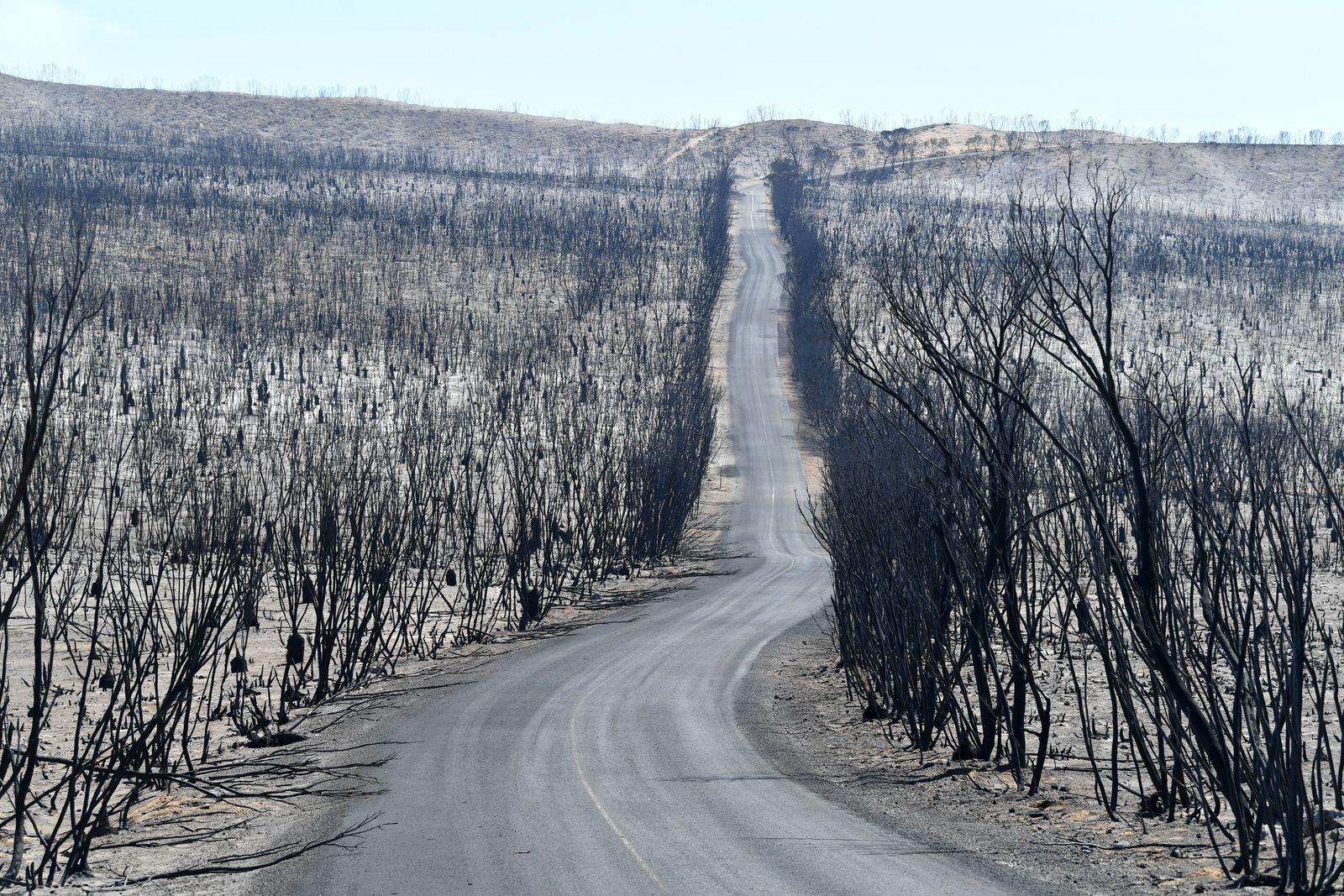Bushfires in Australia, Kangaroo Island - 07 Jan 2020