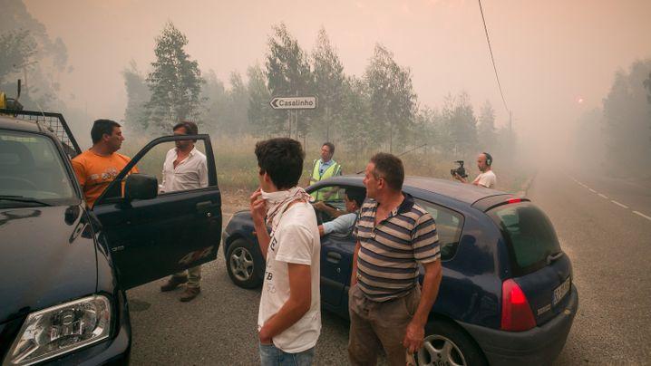 Waldbrand in Portugal: Das Feuer wütet weiter