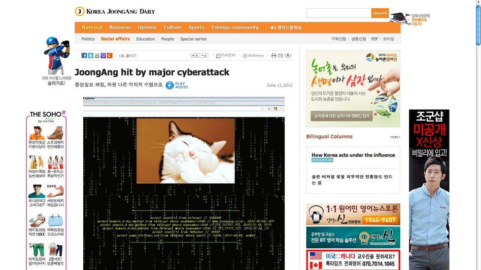 """Screenshot """"JoongAng Ilbo"""": Hacker ersetzten die Startseite durch ein Katzenbild"""