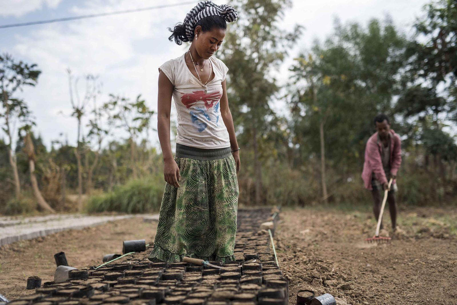 EINMALIGE VERWENDUNG Modellstadt Äthiopien
