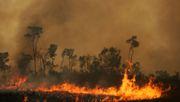 Zahlenkrieg um den Amazonas