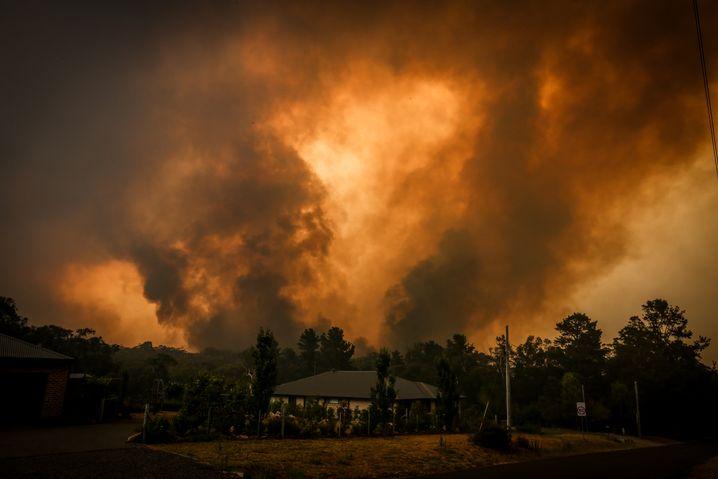 Brände bei Sydney: Hochgefährliche Buschfeuer