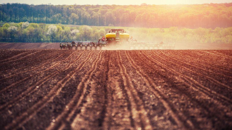 """Traktor auf einem Feld: """"Ob und wie ein Wirkstoff angewendet werden soll, muss die Politik entscheiden."""""""