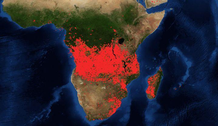 Satellitenbilder zeigen das Ausmaß der Brände
