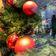 Handel fordert Abholerlaubnis für Weihnachtsgeschenke