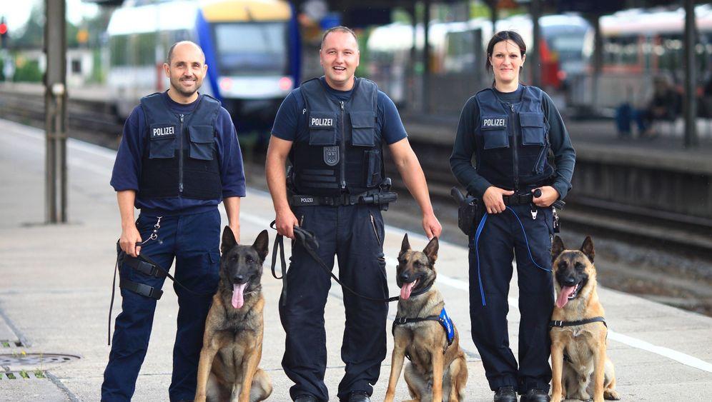 Trainer für Polizeihunde: Beißspiele mit Max und Keks