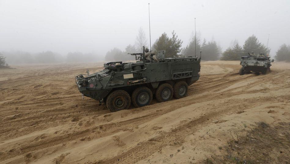 """US-Schützenpanzer des Typs Stryker in Lettland (Archiv): """"Atlantische Entschlossenheit"""""""
