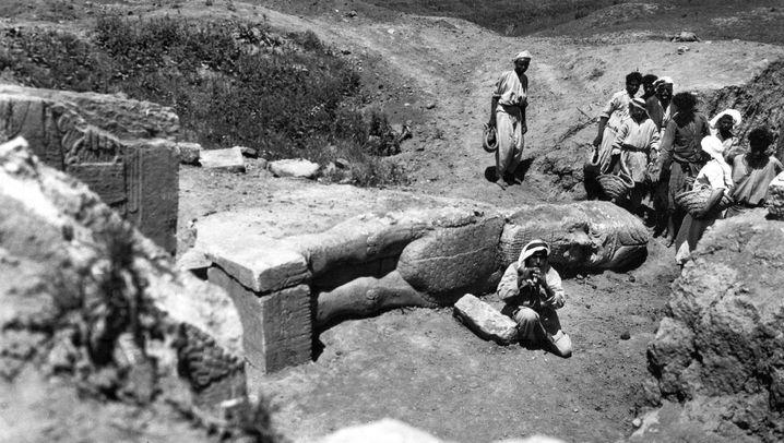 Fotos aus Nimrud: Christies Mission