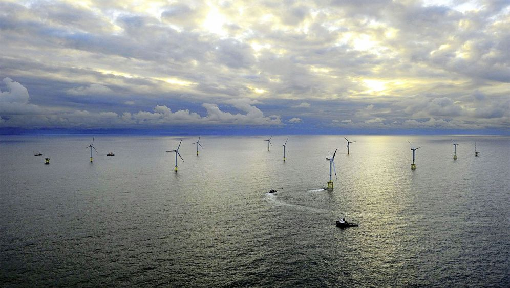Photo Gallery: Saving Germany's Whales from Wind Farm Noise