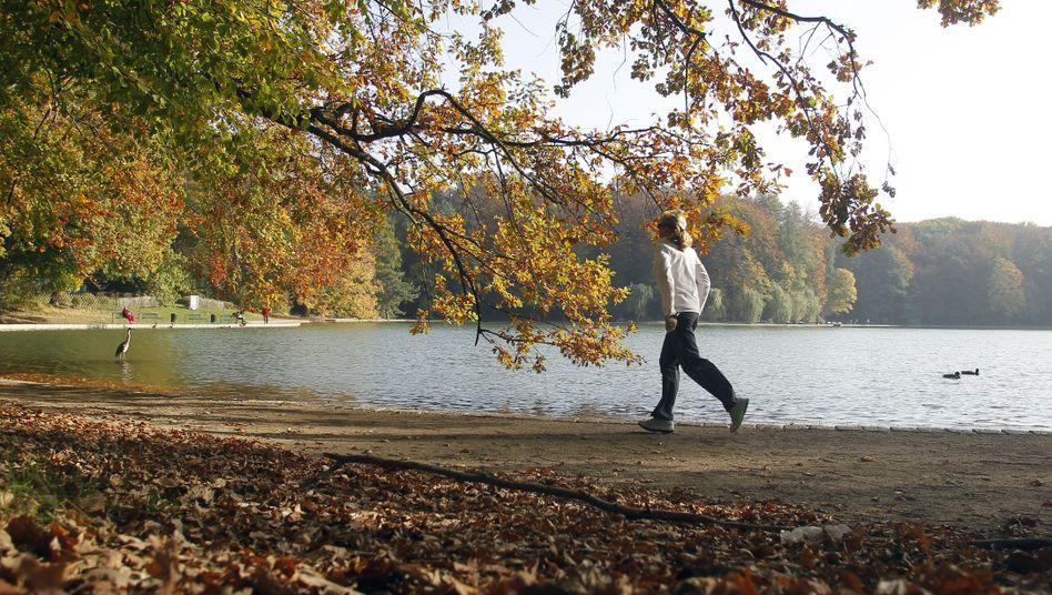Joggerin am See: Das Laufen kann ein positives Erlebnis darstellen - daran mangelt es depressiven Mensch oft