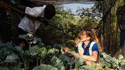 Eine junge Managerin hat neue Ideen gegen den Welthunger