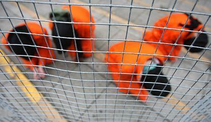 Guantanamo: Speziallager der US-Armee