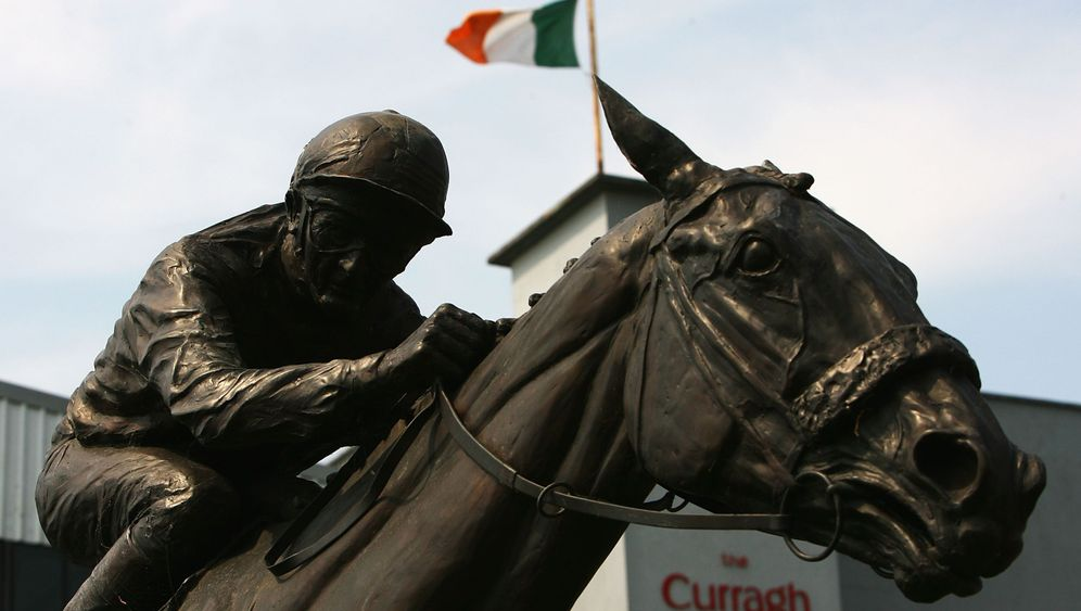 Photo Gallery: Ireland's Horse Crisis