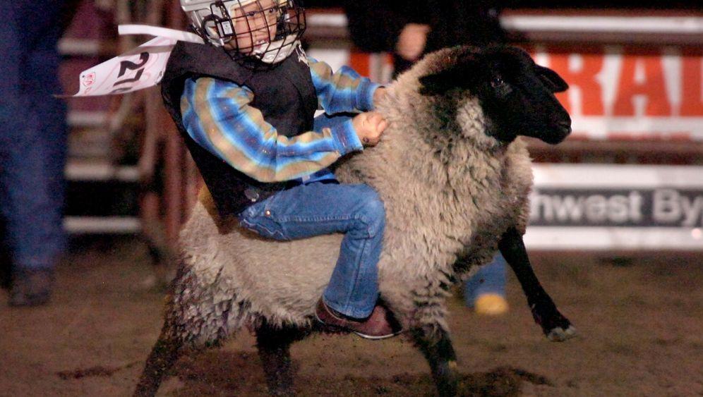 Sport-verrückt: Schweine, Schnupfen, Schlamm