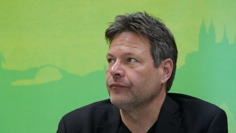 Grünenvorsitzender Habeck: Empfehlung als Chefstratege für VW