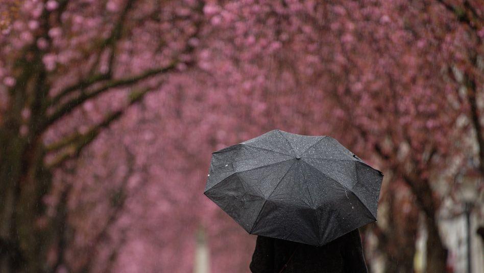 Vielerorts könnte es in Deutschland auch regnen