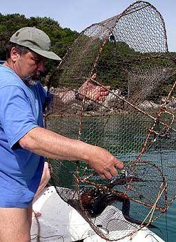 Frischer Fisch ist in der Region sehr gefragt
